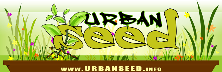 Urban Seed Project